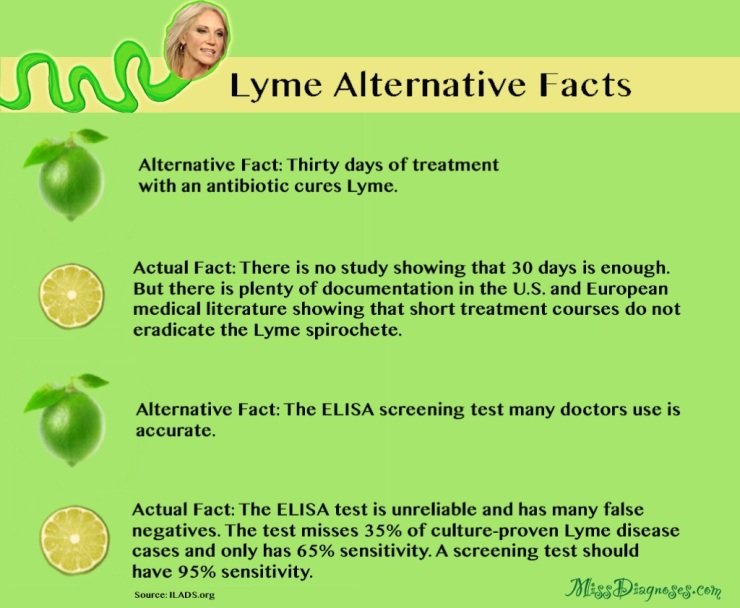 Alternative Lyme facts part 2