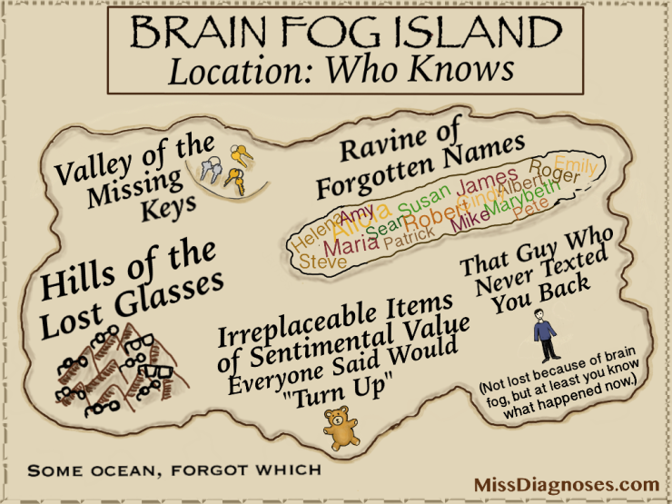 Brain Fog Island, where all your stuff goes